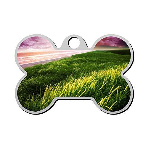 (Kafne Seaside Green Grass Custom Pet ID Label ized Personalized Dog Label & Cat Label Bone Shape Identity)