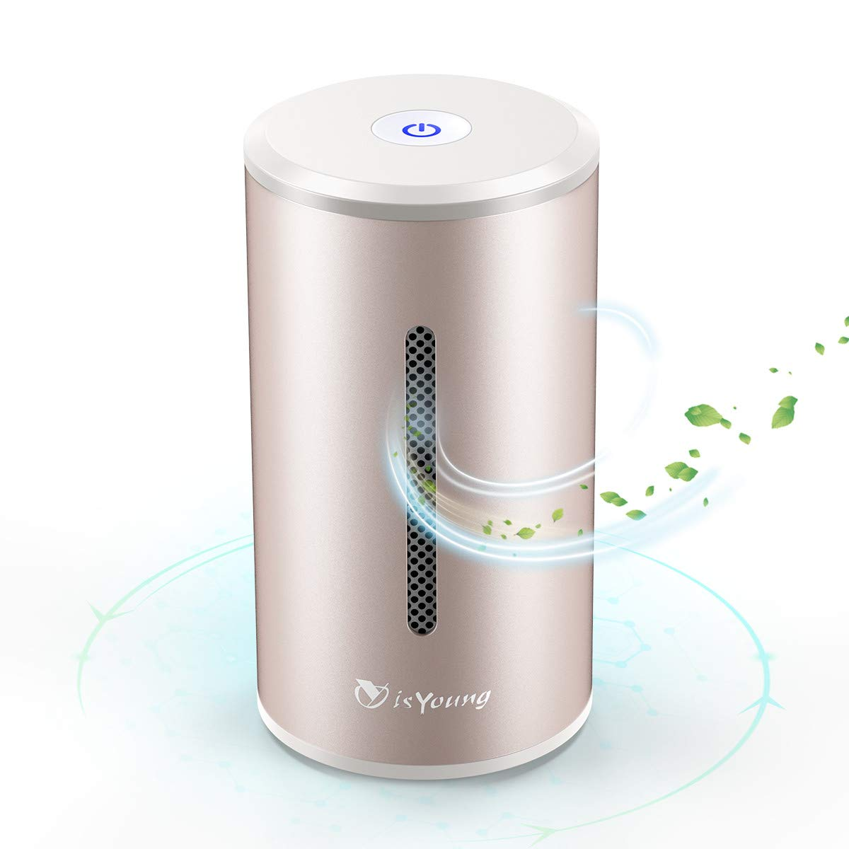 isYoung Air Purifier with True Hepa Filter,