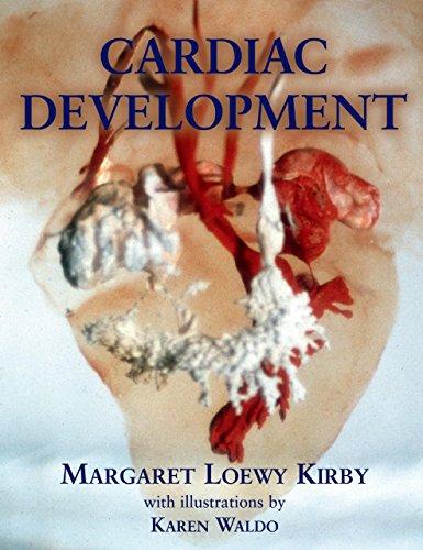 Download Cardiac Development Pdf