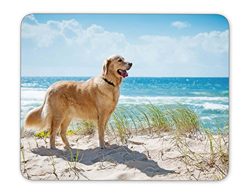 ABin Golden retriever on a sandy dune overlooking tropical beach Mouse pad Mouse Pad The Office Mat Mouse Pad Gaming Mousepad Nonslip Rubber Backing