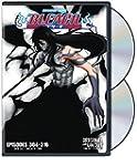 Bleach Uncut Set 22 (ep.304-316)