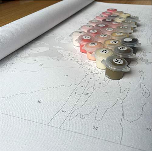 Cucciolo e Lupo Dipinto di Numeri Nessuna Cornice QIANERA Digitale Pittura ad Olio 16/×20 inch 40/×50cm Tela Dipingere con i Numeri Kits per Adulti Bambini Junior