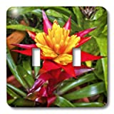 3dRose LLC lsp_34477_2 Red and Yellow Tropical Flower - Double Toggle Switch