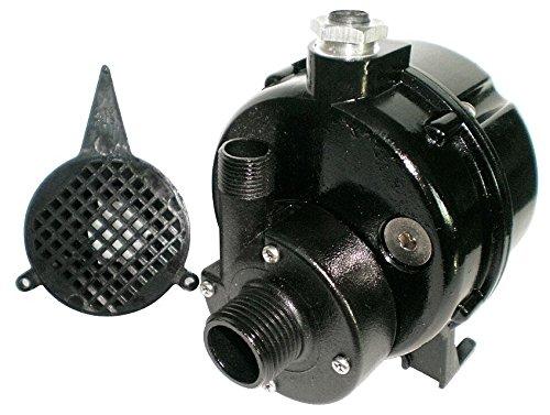 Dayton 12U595 Pump, Submersible, 1/100HP