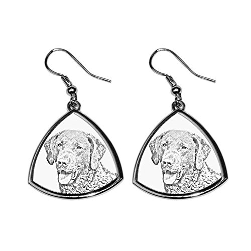 (Chesapeake Bay Retriever, collection of earrings with images of purebred dogs, unique gift)