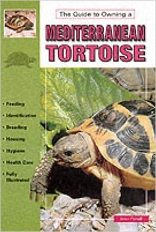 Book Mediterranean Tortoises by Brian Pursall (1995-03-02)