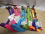 Valhoma Double Ply Kid Nanny Billy Goat Nylon Neon Rainbow Halter Collar (Kid, Purple)