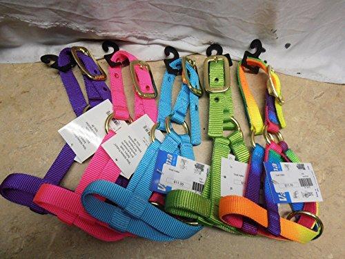 Valhoma Double Ply Kid Nanny Billy Goat Nylon Neon Rainbow Halter Collar