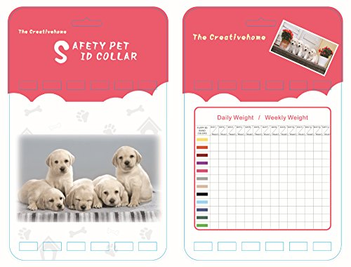 The Creativehome Puppy ID Collar Identification Soft Nylon Adjustable Breakaway Safety Whelping Litter Collars for Newborn Pets with Record Keeping Charts 12pcs/set by The Creativehome (Image #6)