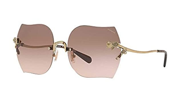 6bb960dcc5 Amazon.com  Coach Womens Sunglasses Gold Pink Metal - Non-Polarized ...