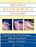 Minimal Access Surgical Anatomy