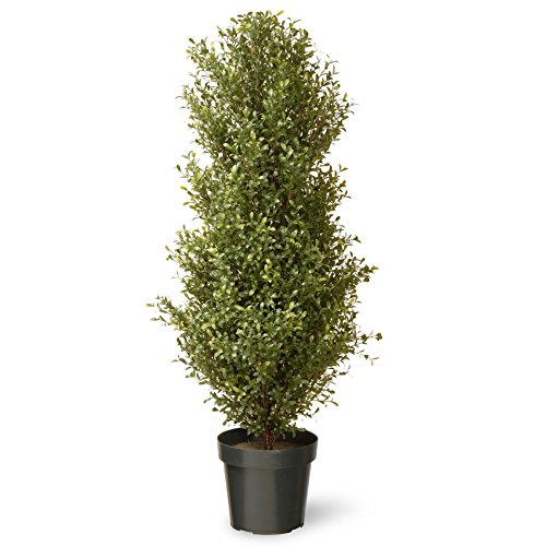 National Tree 48 Inch Argentia Plant in Green Pot (LAR4-700-48)