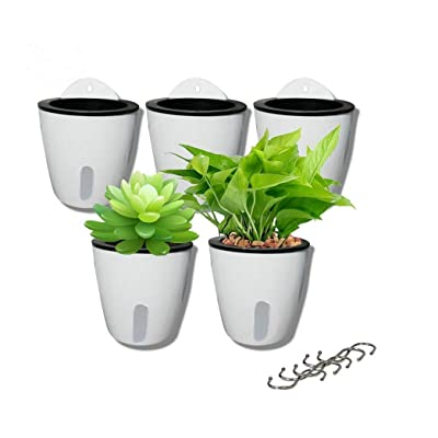 DODXIAOBEUL 5 Pack Visible Water Level Flower pots, Water Plants Pots Self Watering Flowerpot, Hanging Planters, Wall Mounted Plants Holder, Small Flower pots Indoor Out Flowerpot with 5 Hooks (White) : Garden & Outdoor
