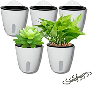 DODXIAOBEUL 5 Pack Visible Water Level Flower pots,Water Plants Pots Self Watering Flowerpot,Hanging Planters,Wall Mounted Plants Holder,Small Flower pots Indoor Out Flowerpot with 5 Hooks (White)