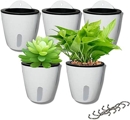 DODXIAOBEUL 5 Pack Visible Water Level Wall Mounted Plant Holder product image
