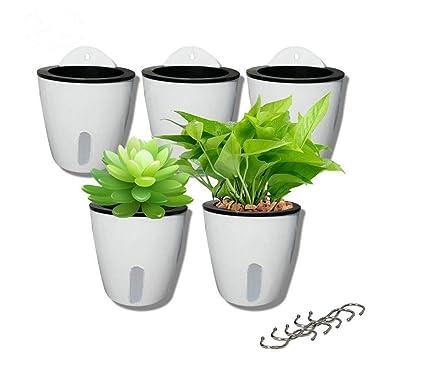 Amazon.com : 5 Pack Visible Water Level Lazy Flower pots Water ... on pink pots, pumpkin pots, flowers pots, pot pots, plant pots, window pots, white pots,