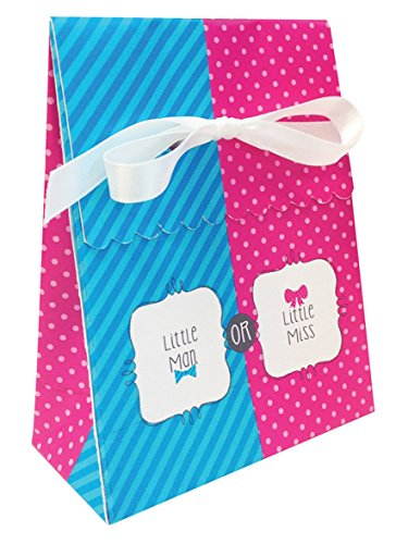 Bow or Bowtie? Favor Bag (12) with Ribbon