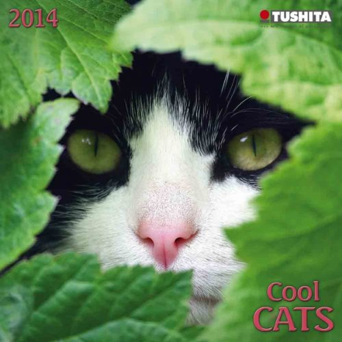 Cool Cats 2014 Mini Calendar (Mini Calendars) (Large Slimline)