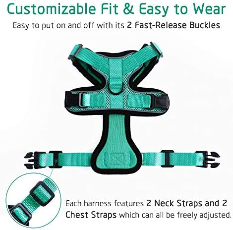 rabbitgoo Cat Harness and Leash for Walking, Escape Proof Soft Adjustable Vest Harnesses for Cats, Easy Control Breathable Reflective Strips Jacket 27