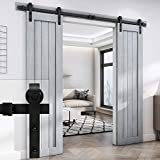 EaseLife 8 Foot Double Sliding Barn Door Hardware Track Kit-Heavy Duty | DIY Easy Install | Ultra Smooth Quiet | 8 Foot Rail Double Kit (Standard Hanger)