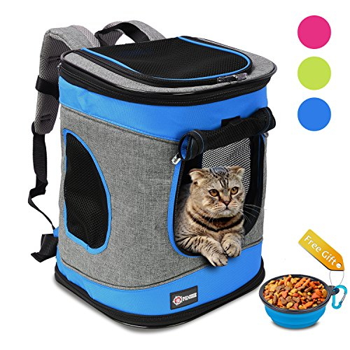 Cat 12 Inch Backpack - 2