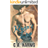 Ryan's Love (Sawyer Brothers Book 1)