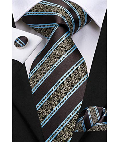 Dubulle Brown Ties for Men Paisely Striped Necktie with Hankerchief Cufflinks Set