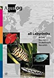 AQUALOG All Labyrinths - Bettas, Gouramis, Snakeheads and Nandids (English and German Edition)