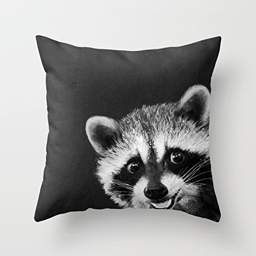 Target Innovations Sleep Pillow Covers Grey cute cartoon raccoon 18x18(inches) ()