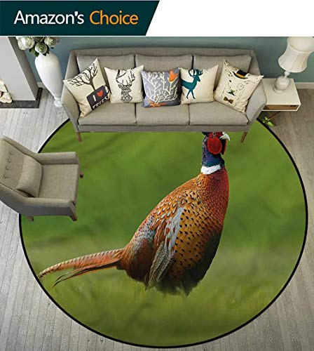 (RUGSMAT Bird Anti-Skid Area Rug,Pheasant Long Tail Meadow Carpet Door Pad for Bedroom/Living Room/Balcony/Kitchen Mat Round-59)