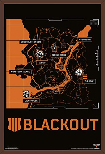 Trends International Call of Duty: Black Ops 4 - Blackout Map Wall Poster, 24.25