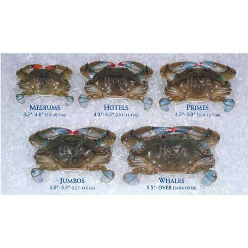 Handy Soft Shell Jumbo Crab, 3.5 Ounce -- 24 per case.