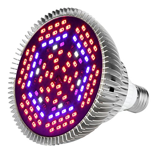 Best Led Grow Lights For Vegetative Growth - 4