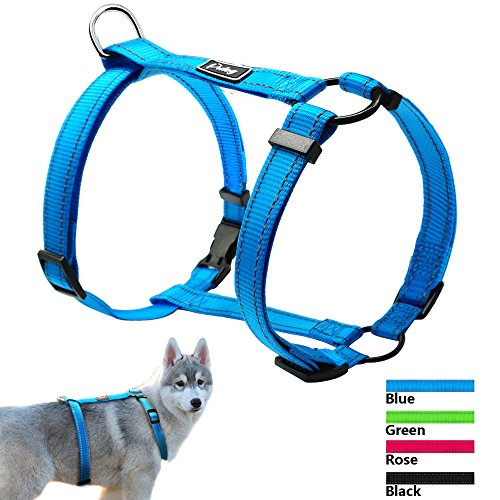 Didog No Pull Dog Walking Harness,Escape Proof Harness Easy for Small Medium Large Dogs,Blue,M Size Great Dane Size Chart