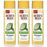Burt's Bees More Moisture Baobab Shampoo, Sulfate-Free Shampoo - 10 Ounce Bottle (Pack of 3)