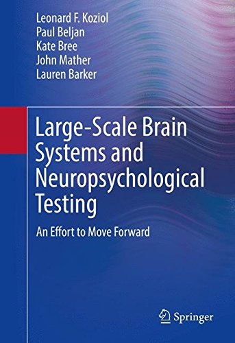 Large-Scale Brain Systems and Neuropsychological Testing: An Effort to Move Forward (The Vertically Organized Brain in Theory and Practice)