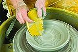 Princeton Artist Brush, Catalyst Wedge, 6 Piece Set