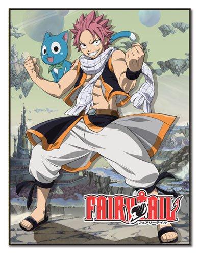 GREAT EASTERN Entertainment Fairy Tail Natsu & Happy昇華Throw Blanket B0199GLBWQ