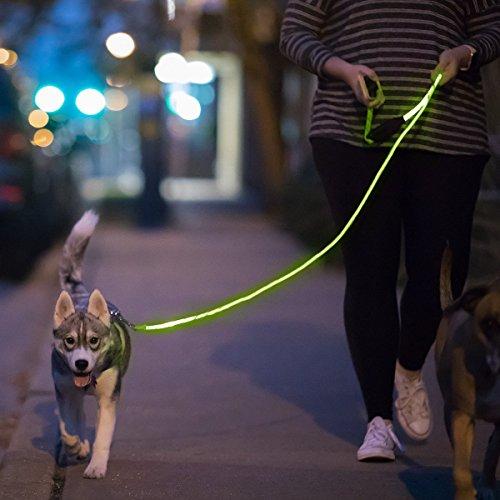 NiteyLeash - LED Glow in The Dark Pet Dog Leash (Green) -