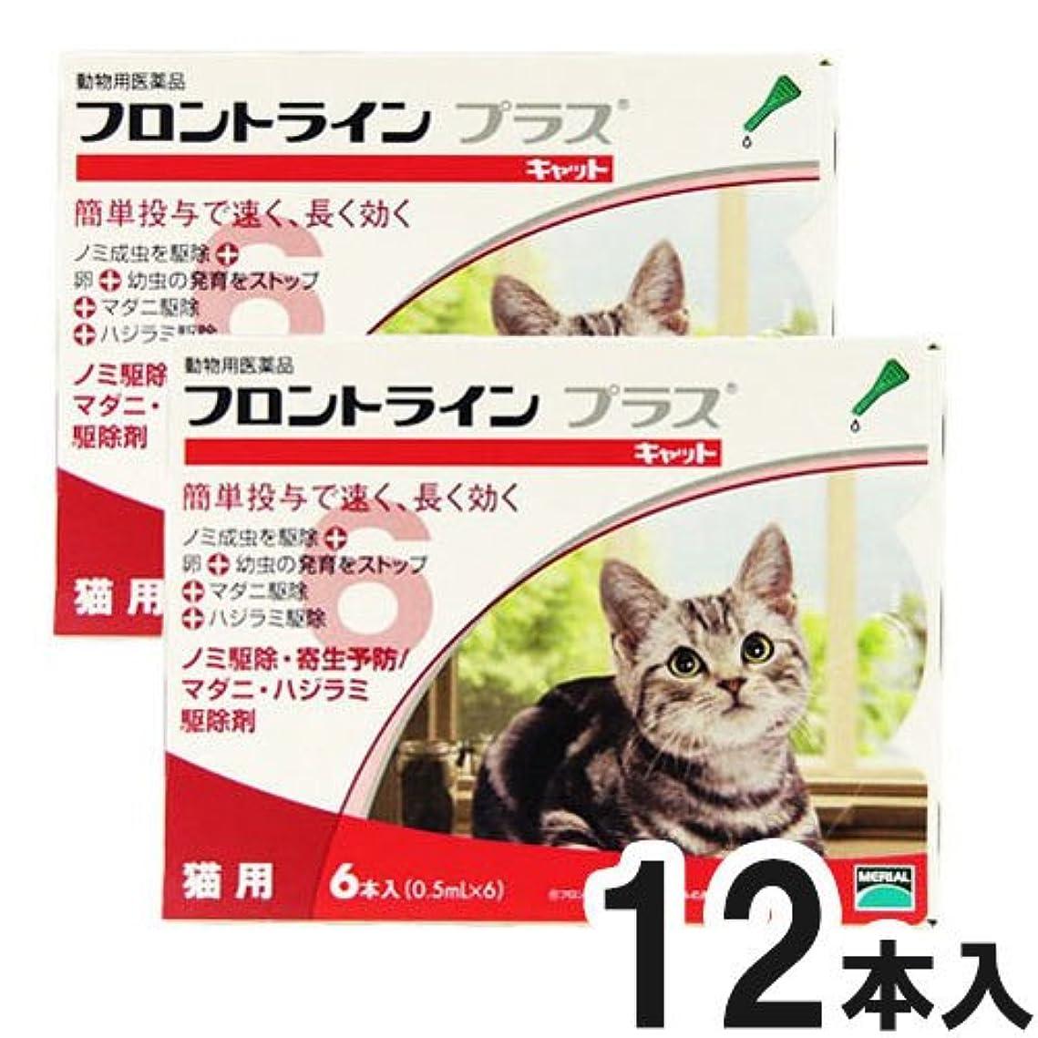 恥ずかしいマオリ建築家ドギーマン 専門店用ペッツテクト+ 猫用 3本入