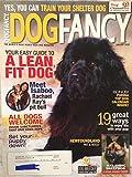 Dog Fancy Magazine January 2009 Newfoundland