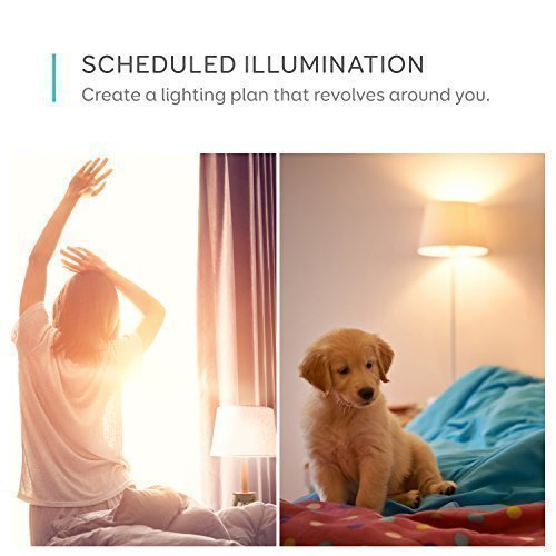 eufy Lumos Smart Bulb by Anker- White, Soft White (2700K), 60W Equivalent, Works with Amazon Alexa & The Google Assistant, No Hub Required, Wi-Fi, Dimmable LED Light Bulb, 9W, A19, E26 (2-Pack) by eufy (Image #4)