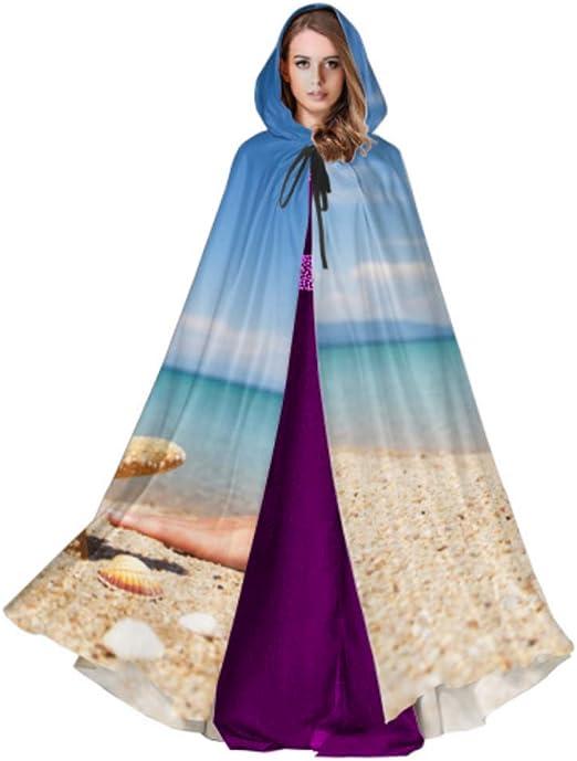 Yushg Concha y Estrella de mar Playa de Arena Cerca del mar Capa ...