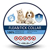 Bomior Flea and Tick Collar for Dogs and Cats - Prevents and Removes Fleas, Ticks, Lice and Mosquitos - Dog Flea and Tick Treatment