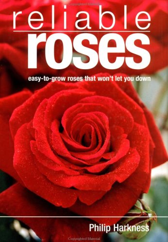 reliable-roses-easy-to-grow-roses-that-won-t-let-you-down