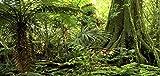 Reptile Habitat Background; Rain Forest, for 36x18x36 Terrarium, 3-sided Wraparound