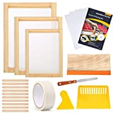 Caydo 23 Pieces Screen Printing Starter kit Include