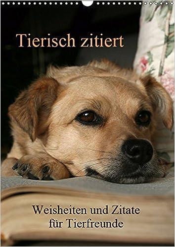 Tierisch Zitiert Wandkalender 2019 Din A3 Hoch Weisheiten