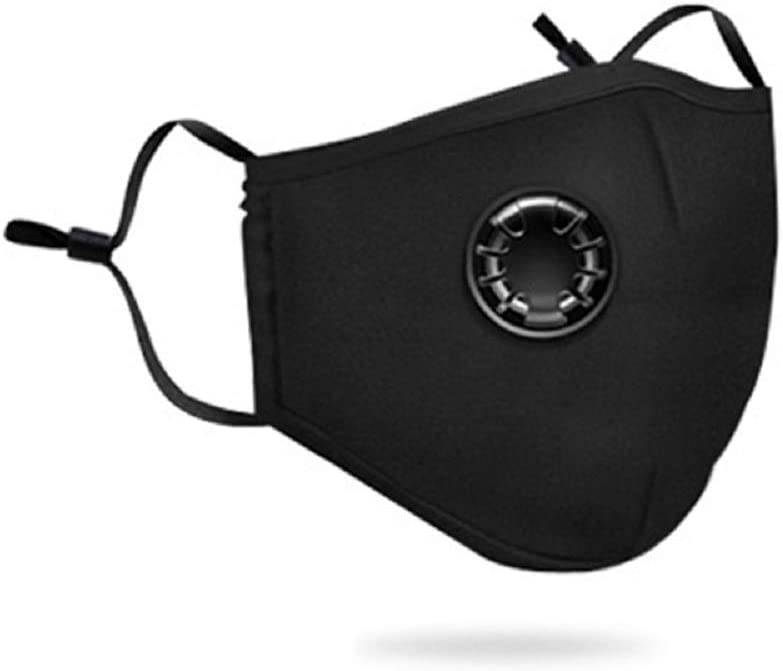 Washable Reusable N95 Anti Air Pollution Face Mask (Black)