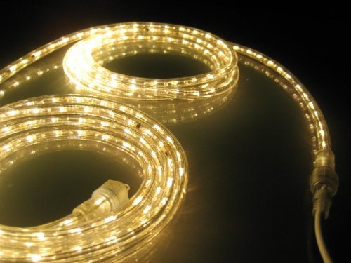 18 Cool White Led Indoor/Outdoor Christmas Rope Lights in Florida - 3